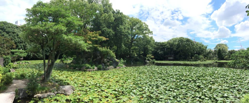 Voyage au japon kyoto fushimi inari for Jardin kyoto