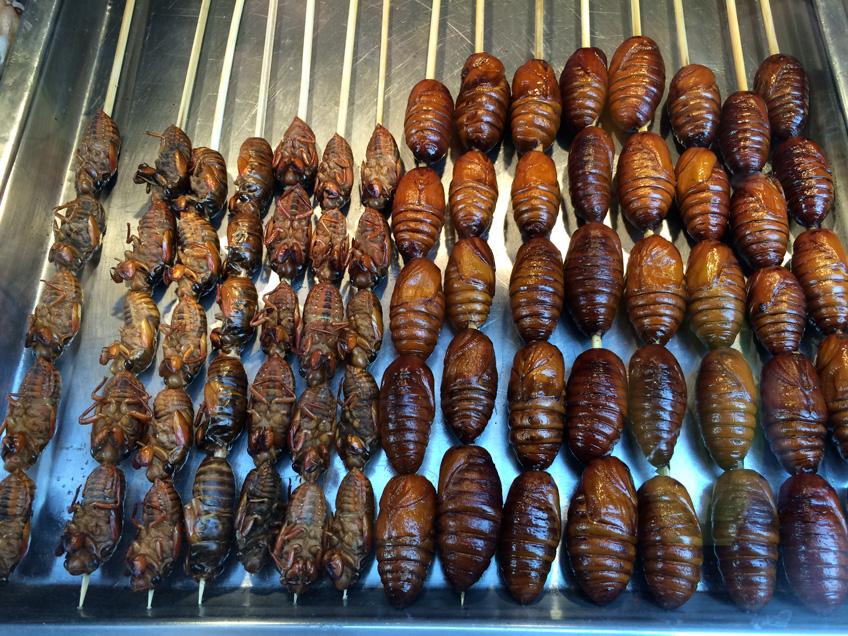 ... Cu0027est Que Très Peu De Chinois Mangent Des Insectes De Cette Façon, Et  Du0027ailleurs, Si Vous Vous Baladez Dans Cette Rue, Vous Verrez Plein De  Chinois, ...